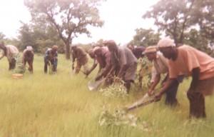 De Balungu-farm in betere tijden.