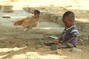 Kind met kip